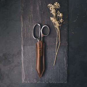 Twig&Horn Klein Shears (left)